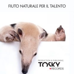 Postcard Tosky Tapir
